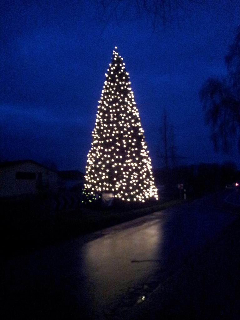 Mammut Weihnachtsbaum leuchtet wieder
